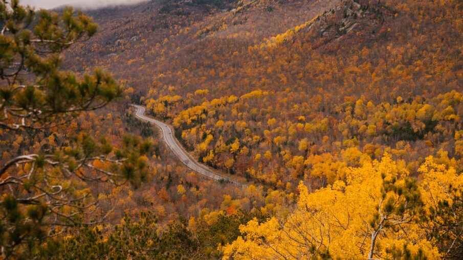 narrow road in mountain valley in autumn
